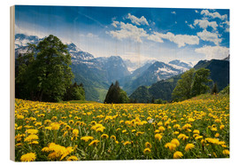 Wood print  Braunwald in spring - Peter Wey