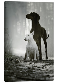 Canvas print  Best Friends - Kathrin Köntopp