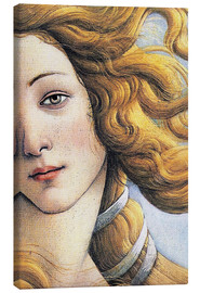 Canvas print  Venus (detail) - Sandro Botticelli