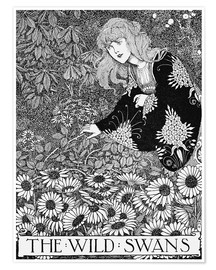 Poster The wild swans