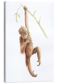 Canvas print  monkey - Nadine Conrad