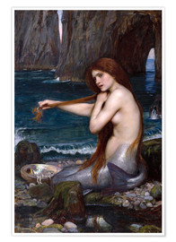 Premium poster The mermaid