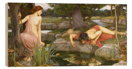 Wood print  Echo and Narcissus - John William Waterhouse