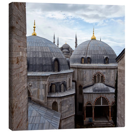 Canvas  Mosques of Istanbul  - Alex Saberi