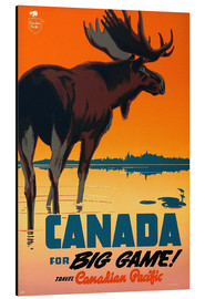 Aluminium print  Canada travel for big game - Travel Collection