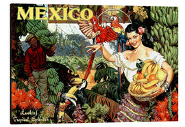 Aluminium print  Mexico - Travel Collection
