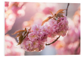 Foam board print  Japanese cherryblossom in LOVE 3 - UtArt