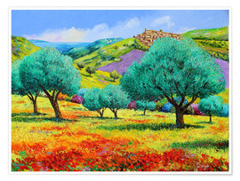 Premium poster 24460 Olive grove facing the sea Kopie