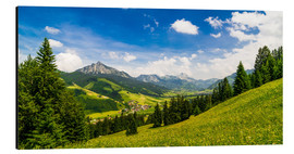 Aluminium print  Valley of Tannheim in Tyrol, Austria - Michael Helmer