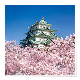 Poster  Nagoya castle with cherry blossom in spring - Jan Christopher Becke