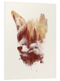 Foam board print  Blind fox - Robert Farkas