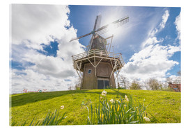 Acrylic print  Windmill in the sun - George Pachantouris