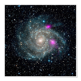 Premium poster Spiral galaxy IC 342, NuSTAR X-ray image