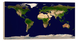 Wood  Topographic world map - Nasa
