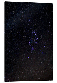 Acrylic print  The Orion Constellation - Laurent Laveder