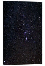 Canvas print  The Orion Constellation - Laurent Laveder