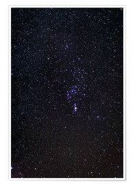 Premium poster  The Orion Constellation - Laurent Laveder