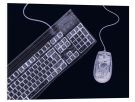 Foam board print  Keyboard and mouse, simulated X-ray - Mark Sykes