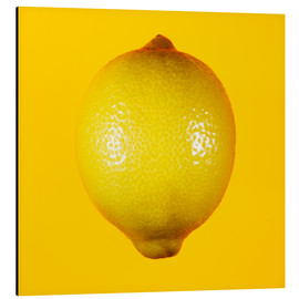Alu-Dibond  Lemon against yellow background - Mark Sykes