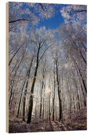 Wood print  Sun in the winter forest - Juerg Alean