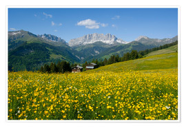 Premium poster Alpine meadow, Switzerland