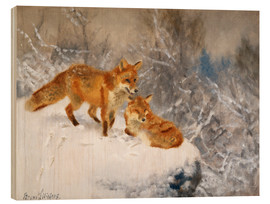 Wood print  Two foxes in a winter landscape - Bruno Andreas Liljefors