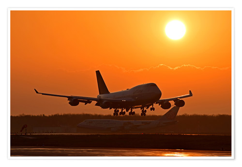 Premium poster Landing a Beoing B747-400 in the sunset