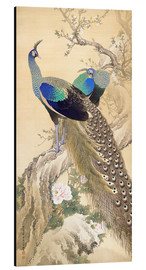 Aluminium print  Two peacocks in spring - Imao Keinen
