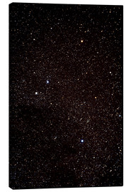Canvas print  Crux constellation - John Sanford