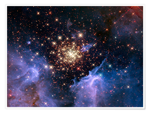 Premium poster Open star cluster NGC 3603, HST image