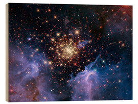 Wood  Open star cluster NGC 3603, HST image - Nasa