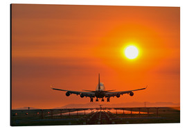 Alu-Dibond  Aeroplane landing at sunset - David Nunuk