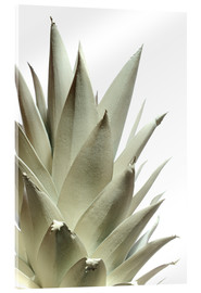 Acrylic glass  White pineapple - Neal Grundy