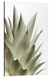 Alu-Dibond  White pineapple - Neal Grundy