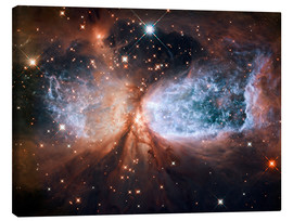 Canvas print  Nebula Sh 2-106 - NASA