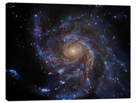 Canvas print  Pinwheel Galaxy (M101), Hubble image - Robert Gendler