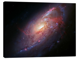 Canvas print  Spiral galaxy M106 - Robert Gendler