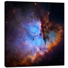 Canvas print  Starbirth region (NGC 281) - Robert Gendler