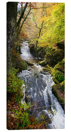Canvas  Lynmouth river woodland - Keith Wheeler