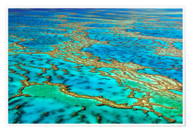 Poster  Great Barrier Reef, Australia - I. Schulz