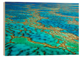 Wood print  Great Barrier Reef, Australia - I. Schulz