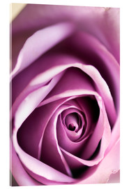 Acrylic glass  Rose - Maria Mosolova