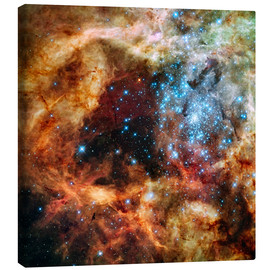 Canvas print  Doradus star clusters - NASA
