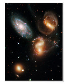 Premium poster  Stephan's Quintet galaxies, HST image - Nasa