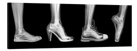 Alu-Dibond  Various shoes (radiograph) - PhotoStock-Israel
