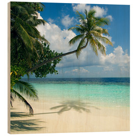 Wood print  Tropical beach - Peter Scoones