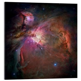 Acrylic print  Orion nebula (M42 and M43) - NASA