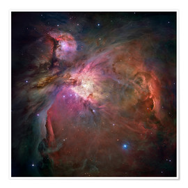 Premium poster  Orion nebula (M42 and M43) - NASA