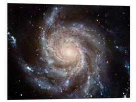 Foam board print  Spiral galaxy M101 - NASA
