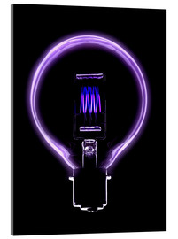 Acrylic print  Incandescent light bulb filament - Mark Sykes